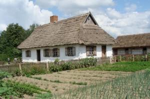 Chałupa zewsi Rębowo z1875 roku. fot.P.Kierzniewski