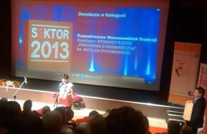 S3EKTOR 2013 kategoria edukacja