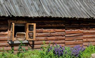 zdjęcie ściany drewnianej chałupy z otwartym oknem i fioletowymi kwiatami